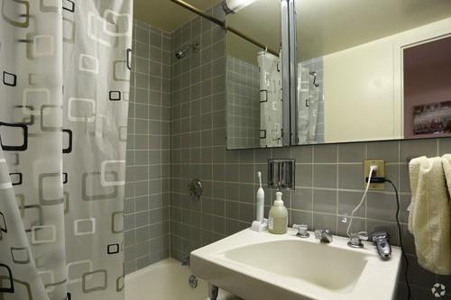 1500 Chicago 2BR bath