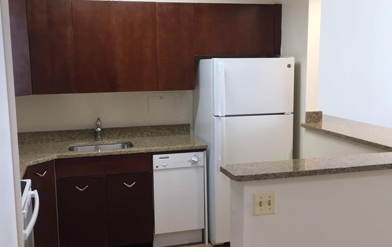 1500 Chicago 1BR kitchen new