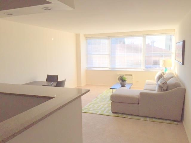 1500 Chicago 1BR living room 2