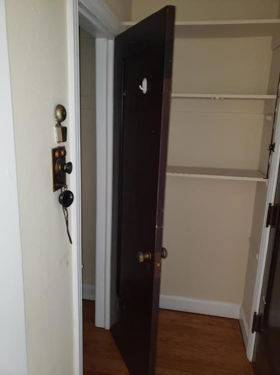 studio hall closet